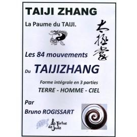 DVD TAIJIZHANG 'la paume du TAIJI'