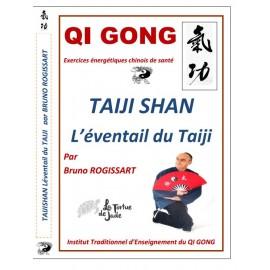 DVD TAIJI SHAN l'éventail du TAIJI